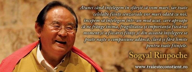 rinpoche-iul-fb