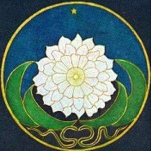 mandala-jung patient