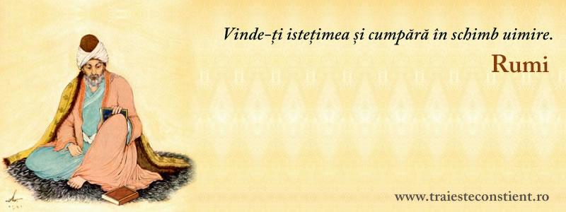 rumi citate Citat Rumi: Vinde ți istețimea și cumpără in schimb uimire rumi citate